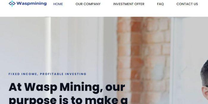 Wasp Mining Review