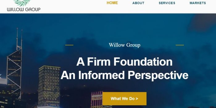 Willow Group Review